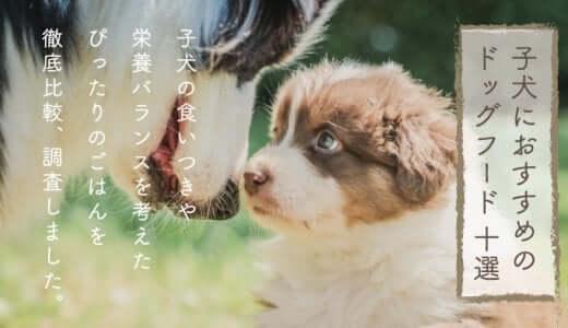 子犬用ドッグフードおすすめランキング|口コミ評判のいい無添加の餌は?