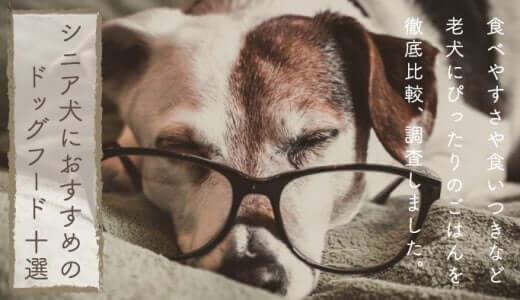 シニア用ドッグフードおすすめランキング|老犬に評判・人気の餌は?