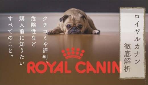 ロイヤルカナンの危険性と口コミ評判|安全なドッグフードを愛犬に与えるために知るべきこと
