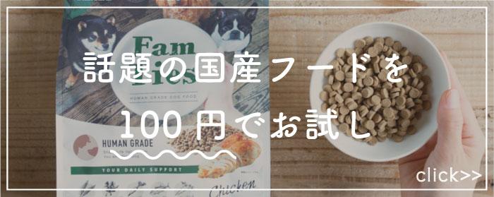 ファムタイズドッグフード100円