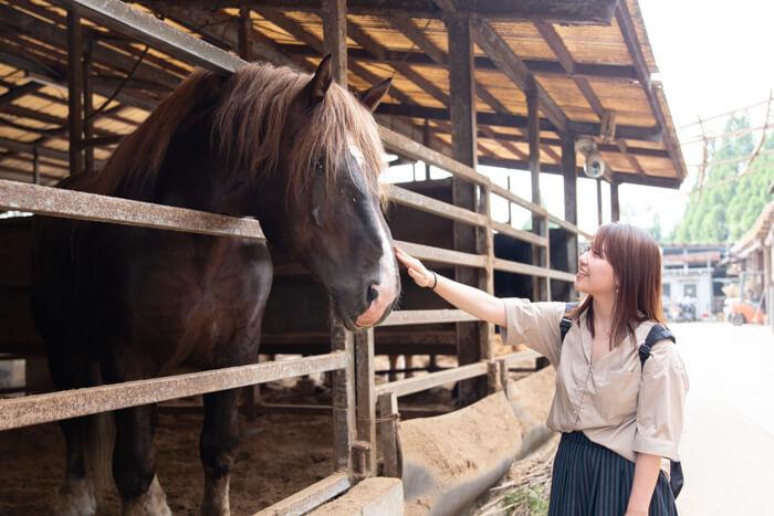 馬肉自然づくりドッグフードの肥育牧場の馬と澤田さん