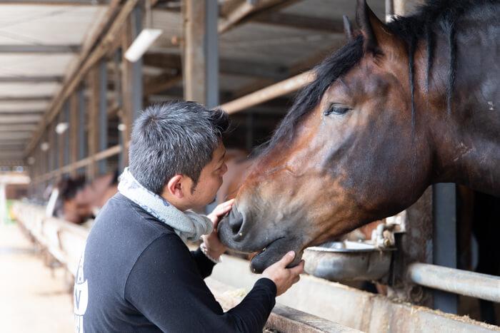 馬肉自然づくりドッグフードの肥育牧場の馬と鈴木田さん2