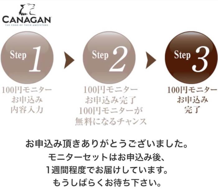 カナガンドッグフードお試し100円モニターの申し込み手順11