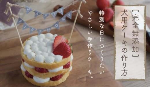 愛犬のための手作りケーキ簡単レシピ|無添加スポンジ・ショートケーキの作り方