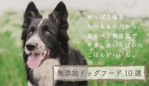 無添加ドッグフード比較ランキング10選|安心安全で口コミ評判のいい愛犬におすすめの餌は?