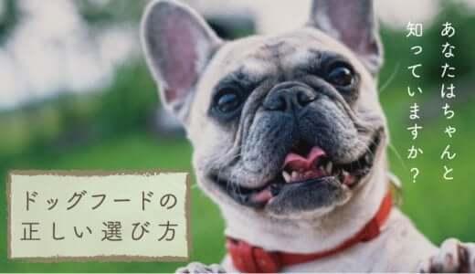 安心安全なドッグフードの選び方|愛犬の健康のために知っておきたい危険な原材料と良質な餌の見分け方