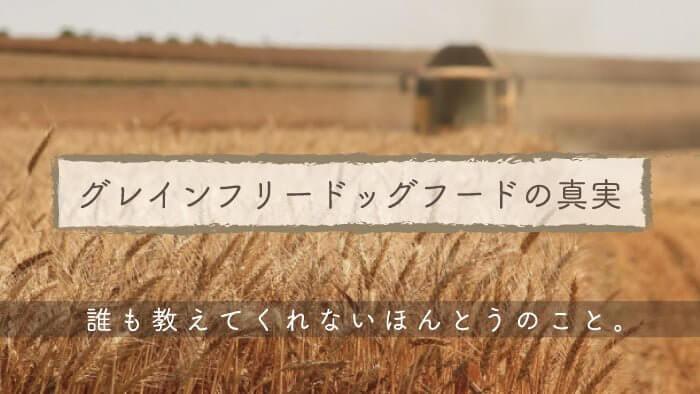 グレインフリー(穀物不使用)ドッグフードに関する真実